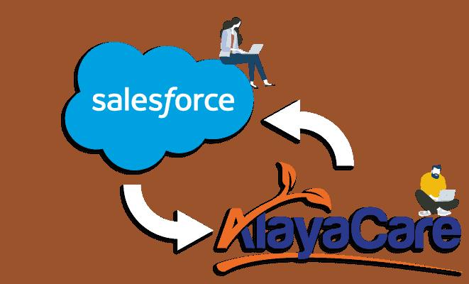 Salesforce AlayaCare Connector
